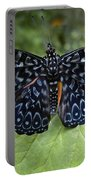 Regal Blue Butterfly Portable Battery Charger