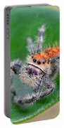 Regal Jumping Spider Portable Battery Charger