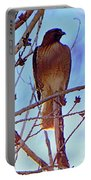 Regal Raptor II Portable Battery Charger