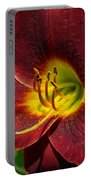 Regal Rouge Portable Battery Charger