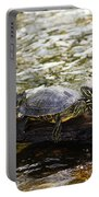Relaxin' Turtles Portable Battery Charger
