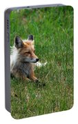 Relaxing Red Fox Portable Battery Charger
