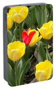 Renegade Tulip Portable Battery Charger