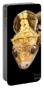 Reptile Close Up On Black Portable Battery Charger