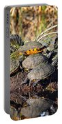 Reptile Refuge Portable Battery Charger