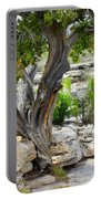 Resilient Tree Portable Battery Charger