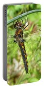 Resting Brown Dragonfly Portable Battery Charger