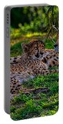 Resting Cheetahs Portable Battery Charger