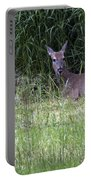 Resting Doe Portable Battery Charger
