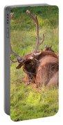 Resting Elk Portable Battery Charger