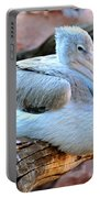 Resting Great White Pelican Portable Battery Charger