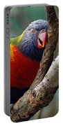 Resting Lorikeet Portable Battery Charger