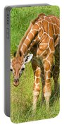 Reticulated Giraffe 6 Week Old Calf Portable Battery Charger