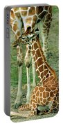 Reticulated Giraffe And Calf Portable Battery Charger