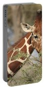 Reticulated Giraffe Feeding On Acacia Portable Battery Charger