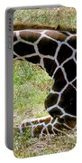 Reticulated Giraffe On Ground Portable Battery Charger