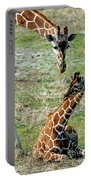 Reticulated Giraffe With Calf Portable Battery Charger