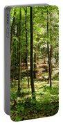 Wooded Path 13 Portable Battery Charger