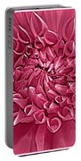 Rhapsody In Pink Portable Battery Charger