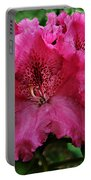 Rhododendron ' Bessie Howells ' Portable Battery Charger