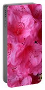 Rhody Girl Portable Battery Charger