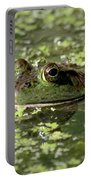 Ribbit Portable Battery Charger