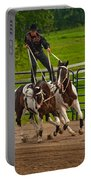 Ride Them Cowboy Portable Battery Charger