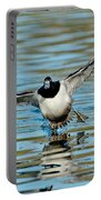 Ring-necked Drake Starting To Land Portable Battery Charger