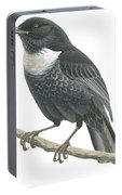 Ring Ouzel  Portable Battery Charger