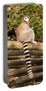 Ring-tailed Lemur Portable Battery Charger