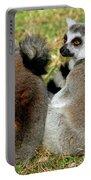 Ring-tailed Lemurs Lemur Catta Portable Battery Charger
