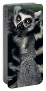 Ringtailed Lemurs Portrait Endangered Wildlife Portable Battery Charger