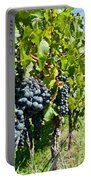 Ripe Grapes Right Before Harvest In The Summer Sun Portable Battery Charger by Ulrich Schade