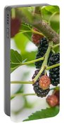 Ripe Mulberry On The Branches Portable Battery Charger