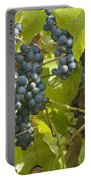Ripe Purple Grapes On Vine  Portable Battery Charger
