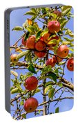 Ripening In The Sun Portable Battery Charger