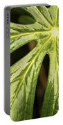 Rising Star The Mayapple Of Spring Portable Battery Charger