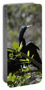 River Bird Portable Battery Charger