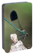 River Damselfly  Portable Battery Charger