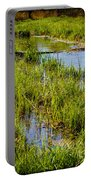 River Kennet Marshes Portable Battery Charger