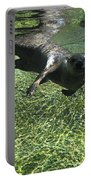River Otter-7714 Portable Battery Charger