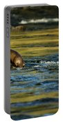 River Otter On A Rock Portable Battery Charger