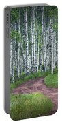 Road Through A Birch Tree Grove Portable Battery Charger
