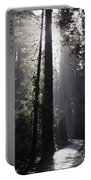 Road Through Redwoods Portable Battery Charger