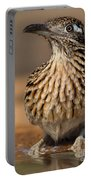 Greater Roadrunner No 1 Portable Battery Charger