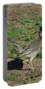 Roadrunner Male With Food Portable Battery Charger