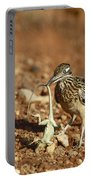 Roadrunner With Lizard Portable Battery Charger