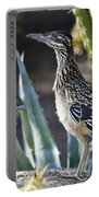 Roadrunners At Play  Portable Battery Charger