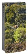 Roadside Forest Scenery Portable Battery Charger