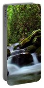 Roaring Fork Waters Portable Battery Charger
